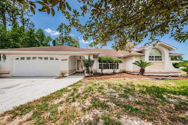 2541 Whitewood Avenue, Spring Hill, FL 34609 (MLS #U8126902) :: Zarghami Group