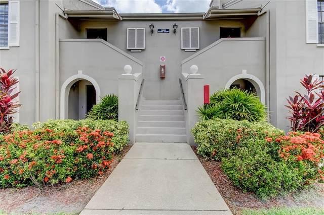 13603 Stork Court P205, Clearwater, FL 33762 (MLS #U8126905) :: Stellar Home Sales