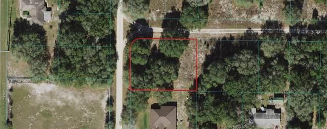 SW 113TH Lane, Dunnellon, FL 34432 (MLS #U8126931) :: Your Florida House Team