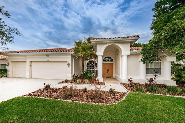 1010 Hagen Drive, Trinity, FL 34655 (MLS #U8126932) :: Team Bohannon