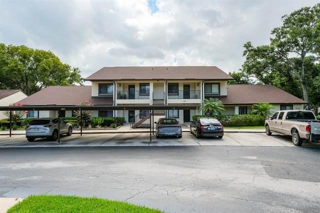 3580 Magnolia Ridge Circle E, Palm Harbor, FL 34684 (MLS #U8126938) :: Godwin Realty Group