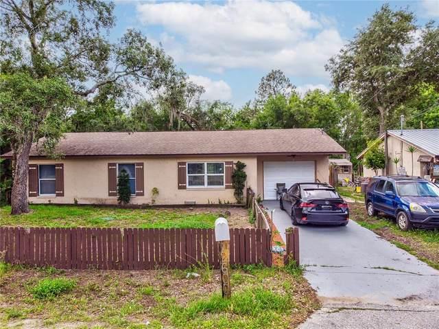 12600 Oconee Boulevard, New Port Richey, FL 34654 (MLS #U8126972) :: Zarghami Group