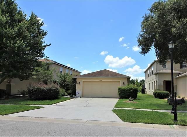 19750 Timberbluff Drive, Land O Lakes, FL 34638 (MLS #U8126973) :: Zarghami Group