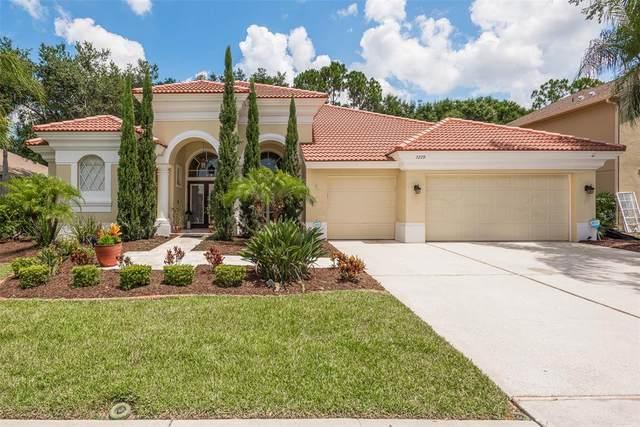 5270 Karlsburg Place, Palm Harbor, FL 34685 (MLS #U8127022) :: Delgado Home Team at Keller Williams