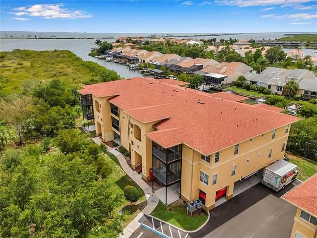 4314 Bayside Village Drive #301, Tampa, FL 33615 (MLS #U8127047) :: The Kardosh Team