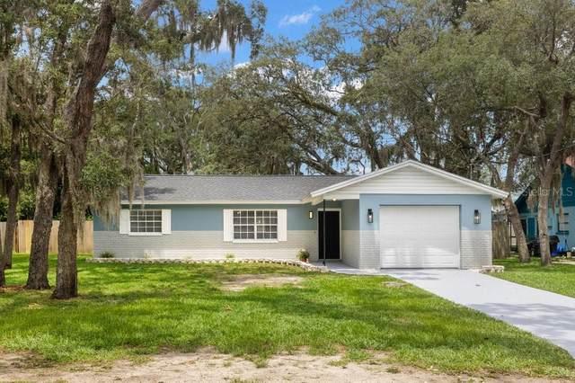 6345 Radford Street, Spring Hill, FL 34606 (MLS #U8127056) :: Team Pepka