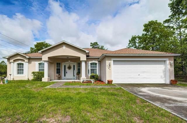 7366 N Galt Point N, Citrus Springs, FL 34434 (MLS #U8127126) :: Armel Real Estate