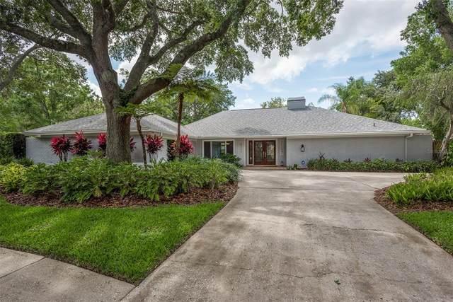 4205 Wayside Willow Court, Tampa, FL 33618 (MLS #U8127185) :: Everlane Realty