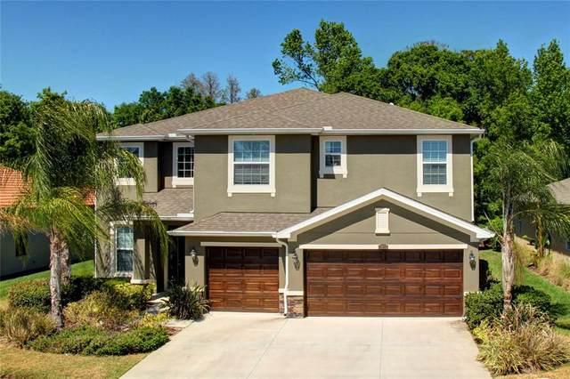 2973 Calvano Drive, Land O Lakes, FL 34639 (MLS #U8127212) :: Vacasa Real Estate