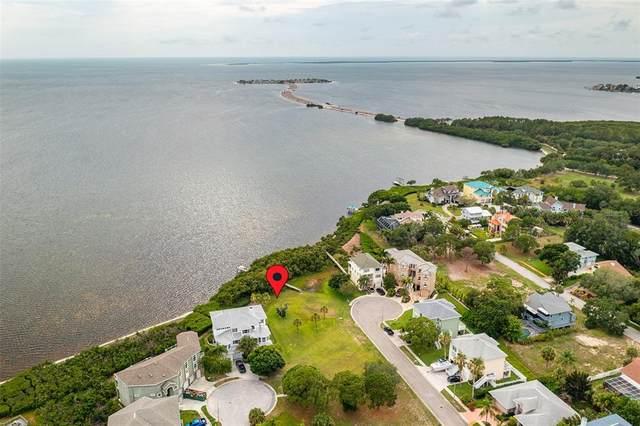 Sunkissed Drive, Tarpon Springs, FL 34689 (MLS #U8127219) :: GO Realty