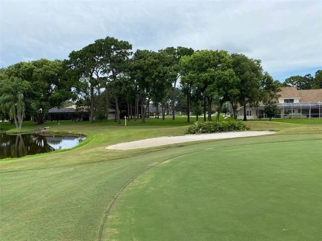 Meadowhill Drive, Clearwater, FL 33761 (MLS #U8127227) :: Charles Rutenberg Realty
