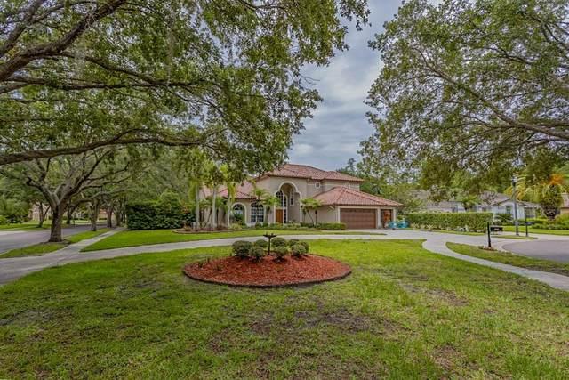 1637 Chatam Court, Oldsmar, FL 34677 (MLS #U8127332) :: Globalwide Realty