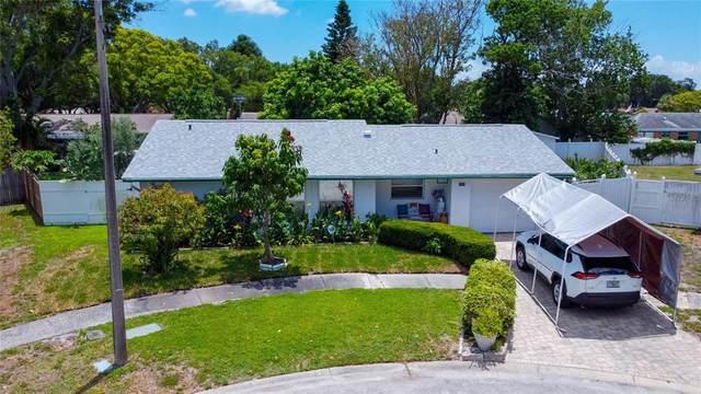 7053 Forestview Terrace N, St Petersburg, FL 33709 (MLS #U8127370) :: Sarasota Home Specialists
