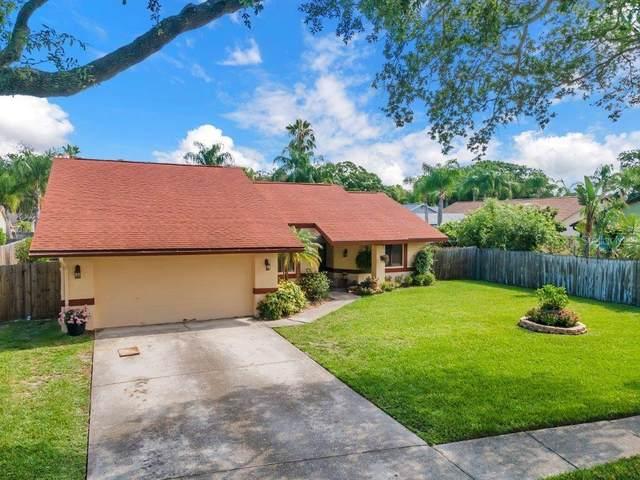 2171 Vance Avenue, Palm Harbor, FL 34683 (MLS #U8127400) :: Delgado Home Team at Keller Williams
