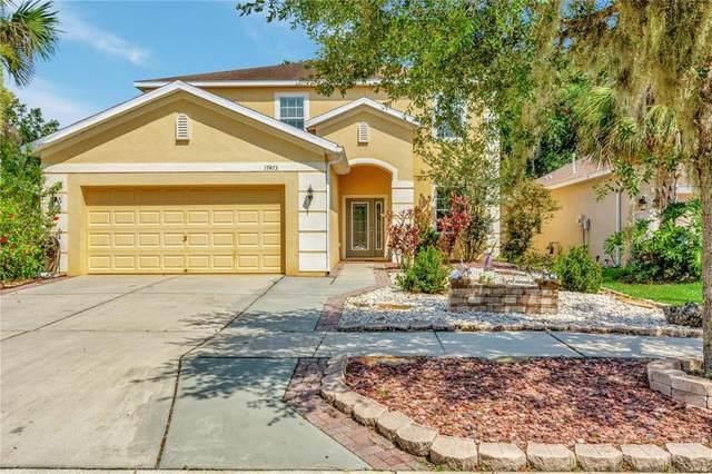 17473 New Cross Circle, Lithia, FL 33547 (MLS #U8127407) :: The Robertson Real Estate Group
