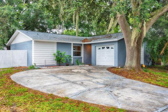 13911 Bridgeport Drive, Tampa, FL 33625 (MLS #U8127427) :: The Duncan Duo Team