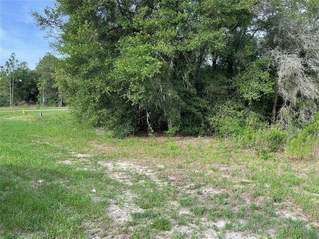11704 N Elkcam Boulevard, Citrus Springs, FL 34433 (MLS #U8127449) :: RE/MAX Elite Realty