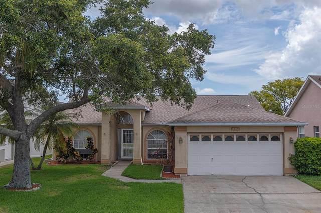 10350 36TH Way N, Clearwater, FL 33762 (MLS #U8127459) :: Keller Williams Realty Select
