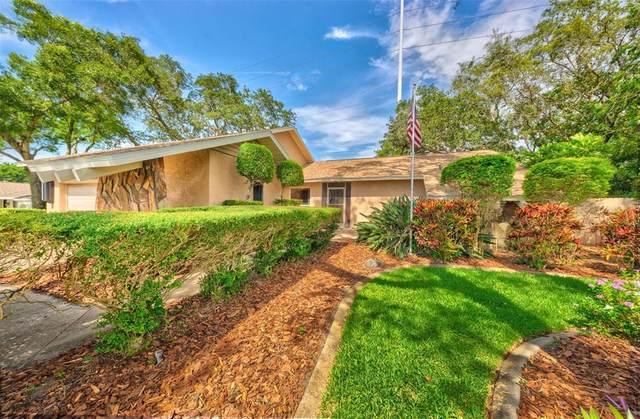 500 Fernshire Drive, Palm Harbor, FL 34683 (MLS #U8127460) :: Realty Executives