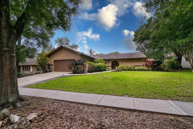 4885 Parson Brown Lane, Palm Harbor, FL 34684 (MLS #U8127486) :: Delgado Home Team at Keller Williams