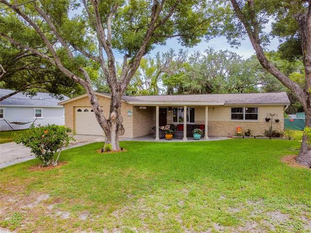5419 Portola Avenue, New Port Richey, FL 34652 (MLS #U8127530) :: Globalwide Realty