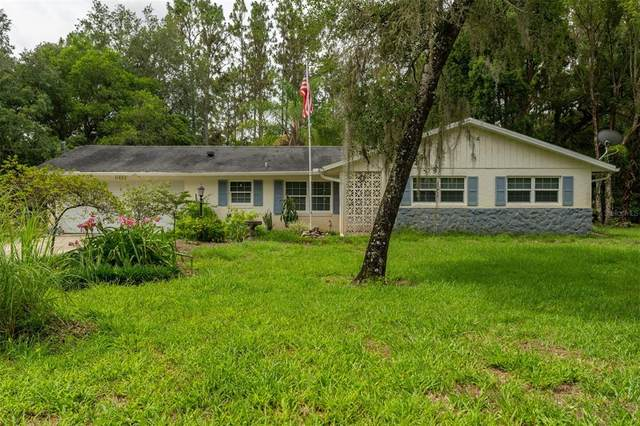 11494 E Steamboat Drive, Floral City, FL 34436 (MLS #U8127532) :: Gate Arty & the Group - Keller Williams Realty Smart