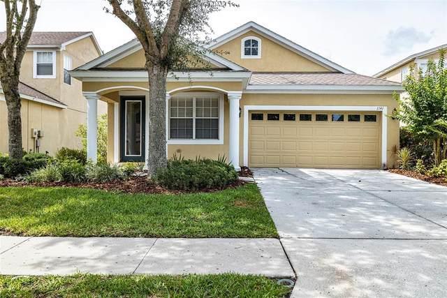 1141 Nashville Drive, Wesley Chapel, FL 33544 (MLS #U8127539) :: Vacasa Real Estate