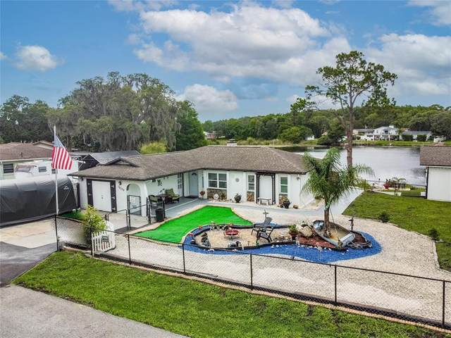 12335 Terra Ceia Avenue, New Port Richey, FL 34654 (MLS #U8127591) :: Frankenstein Home Team