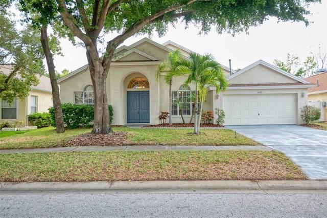 1821 Longview Lane, Tarpon Springs, FL 34689 (MLS #U8127602) :: EXIT King Realty
