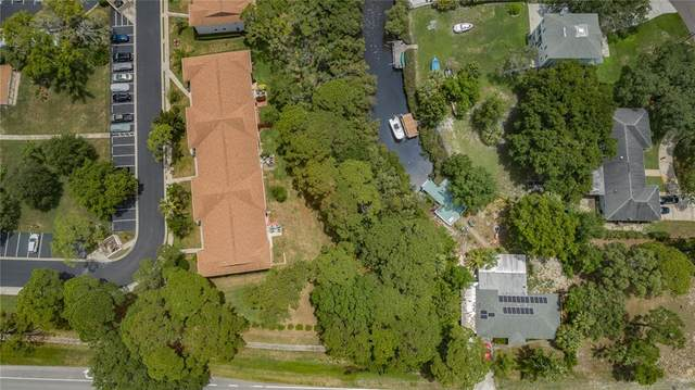 896 Curlew Place, Tarpon Springs, FL 34689 (MLS #U8127689) :: Team Turner