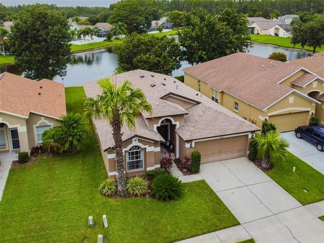 3903 Lockridge Drive, Land O Lakes, FL 34638 (MLS #U8127767) :: Vacasa Real Estate