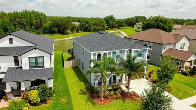 4611 Coachford Drive, Wesley Chapel, FL 33543 (MLS #U8127774) :: The Home Solutions Team | Keller Williams Realty New Tampa