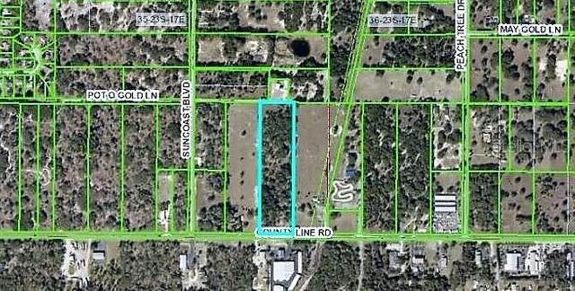0 County Line Road, Spring Hill, FL 34608 (MLS #U8127820) :: GO Realty