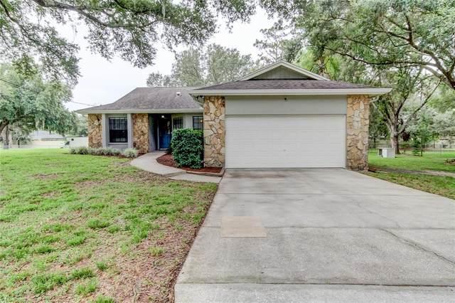 27352 Golden Meadow Drive, Wesley Chapel, FL 33544 (MLS #U8127843) :: The Home Solutions Team | Keller Williams Realty New Tampa