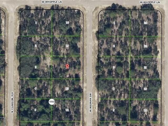 3572 W Nieman Drive, Citrus Springs, FL 34433 (MLS #U8127875) :: EXIT Realty Positive Edge