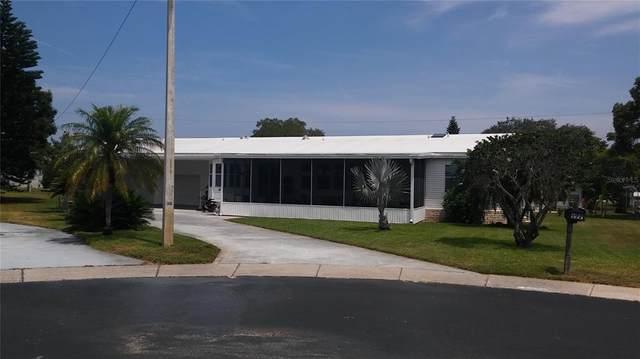 177 Revere Court #28, Palm Harbor, FL 34684 (MLS #U8127892) :: Sarasota Home Specialists
