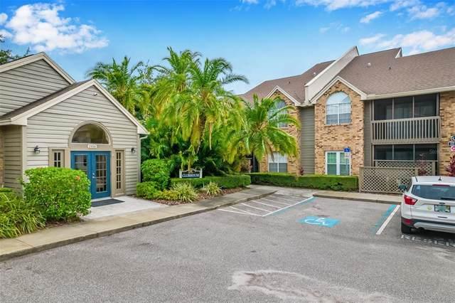 2500 Winding Creek Boulevard C101, Clearwater, FL 33761 (MLS #U8127957) :: Alpha Equity Team