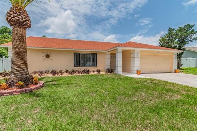 2062 Glenbrook Drive, Dunedin, FL 34698 (MLS #U8128005) :: The Home Solutions Team | Keller Williams Realty New Tampa