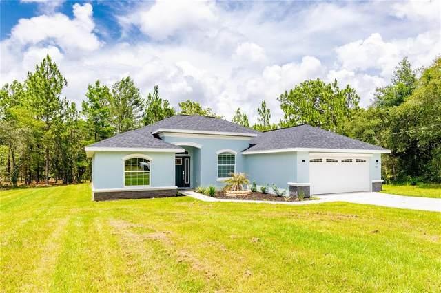 2145 W Riley Drive, Dunnellon, FL 34434 (MLS #U8128043) :: Armel Real Estate
