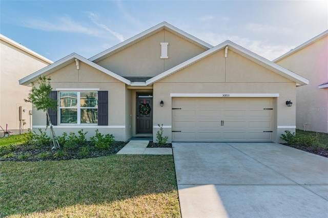 30800 Summer Sun Loop, Wesley Chapel, FL 33545 (MLS #U8128044) :: The Home Solutions Team | Keller Williams Realty New Tampa