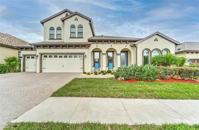 909 Floresta Street, Brandon, FL 33511 (MLS #U8128087) :: Griffin Group