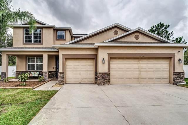 3450 Marmalade Court, Land O Lakes, FL 34638 (MLS #U8128095) :: Alpha Equity Team