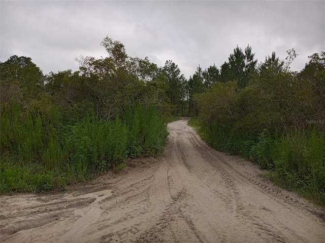 0 Primrose Lane, Webster, FL 33597 (MLS #U8128104) :: Zarghami Group