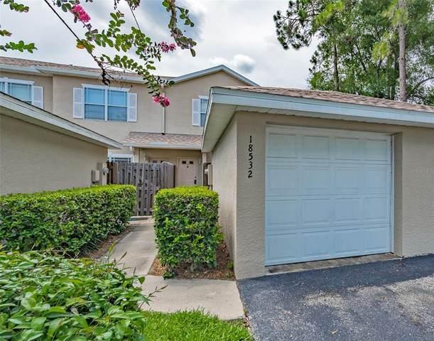 18532 Pebble Lake Court, Tampa, FL 33647 (MLS #U8128122) :: Griffin Group