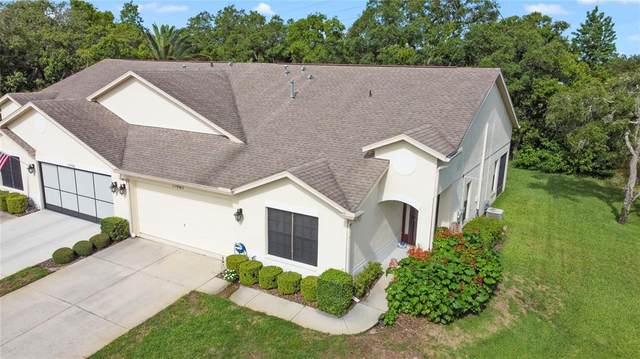 11067 Cherrywood Court, Spring Hill, FL 34609 (MLS #U8128149) :: Griffin Group