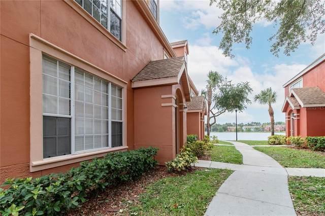 9670 Lake Chase Island Way #9670, Tampa, FL 33626 (MLS #U8128193) :: Rabell Realty Group