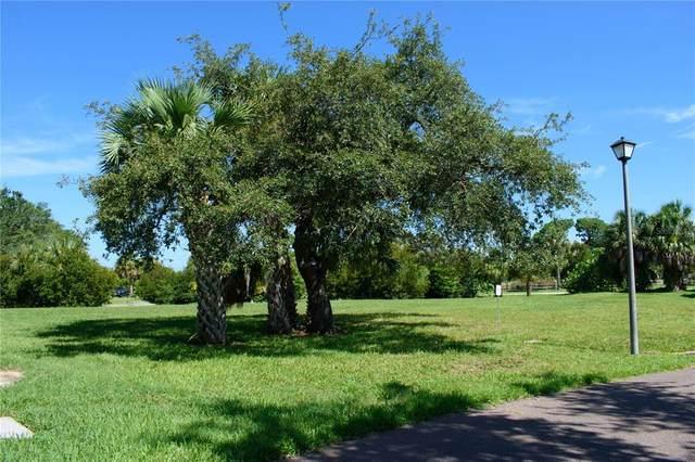 S Pointe Alexis Dr, Tarpon Springs, FL 34689 (MLS #U8128269) :: MVP Realty