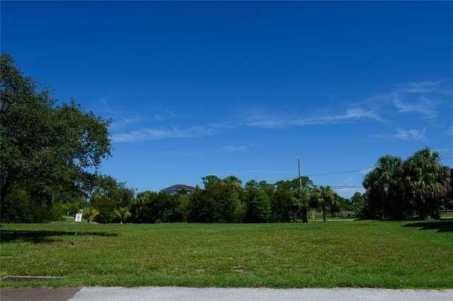S Pointe Alexis Drive, Tarpon Springs, FL 34689 (MLS #U8128284) :: MVP Realty