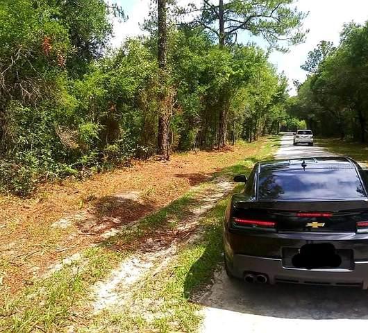 Packingham Drive, Webster, FL 33597 (MLS #U8128297) :: Zarghami Group