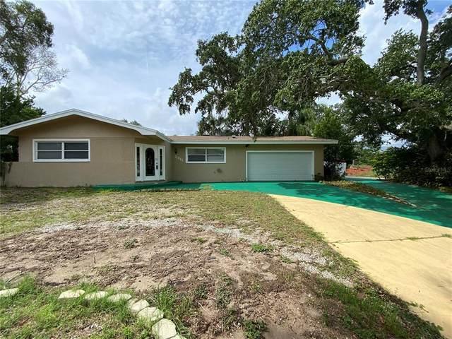 2311 Dora Drive, Clearwater, FL 33765 (MLS #U8128625) :: Zarghami Group